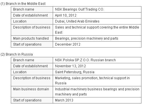 NSK emerging markets1